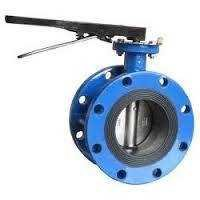 Double Flanged Valves / Double Flanges Valve