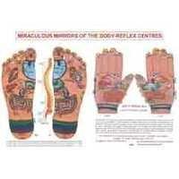 ACP Reflexology Chart - Foot & Hand