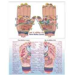 ACP Reflexology - V.Card Eng. - Foot/Hand 100 pc.