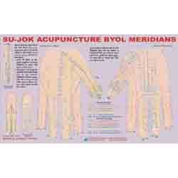 ACP Sujok Acupuncture - Byol Meridian Chart