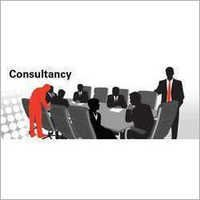 Subsidy Consultant Service