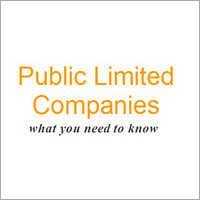 Public Limited Companies Service