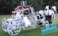 Wedding Bride Entry Cinderella Carriage