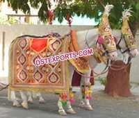 Indian Wedding Barat Horse Decorations