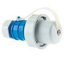 Plug - with cable gland