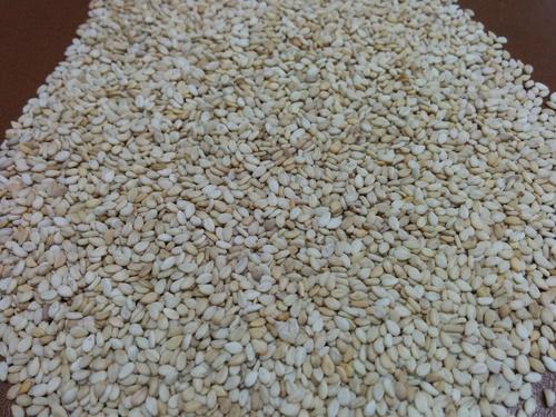Credence Natural Sesame Seeds