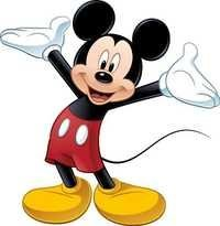 Micky Mouse Professional Cartoon Character