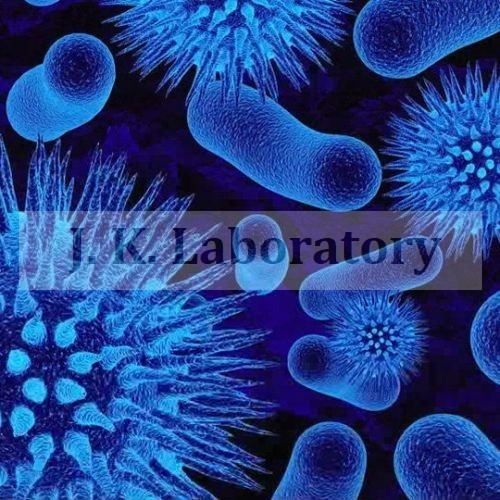 Virology Testing Services