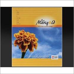 Brochure Folder Printing Services