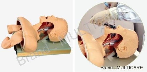 Airway Intubation Simulator
