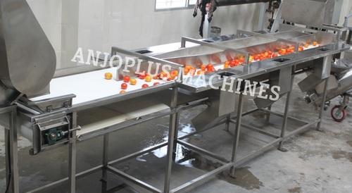 Inspection Belt Conveyors