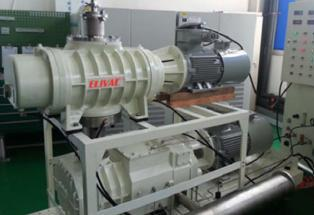 Piston roots combination Pump