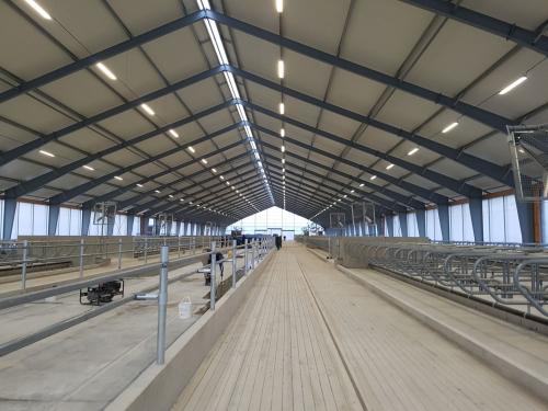 ABF Roof Insulation