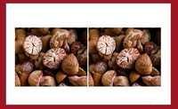 Fali Betel Nuts