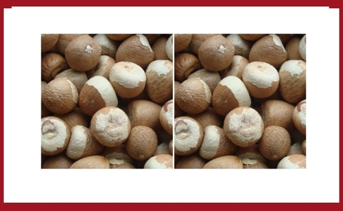 Jeeni Betel Nuts