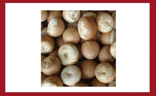 Betel Nuts / Areca Nuts