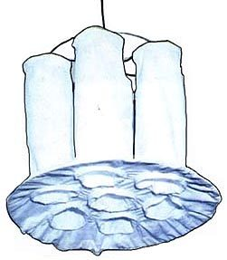 Fluid Bed Dryer Bags
