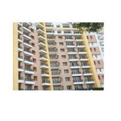 Apartments Windows