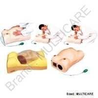 Maternity Examination Model