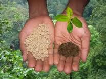 Fertilizer Soil Testing Services