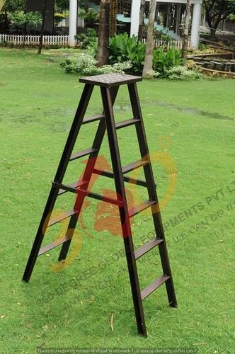 Self Support Ladder with Platform