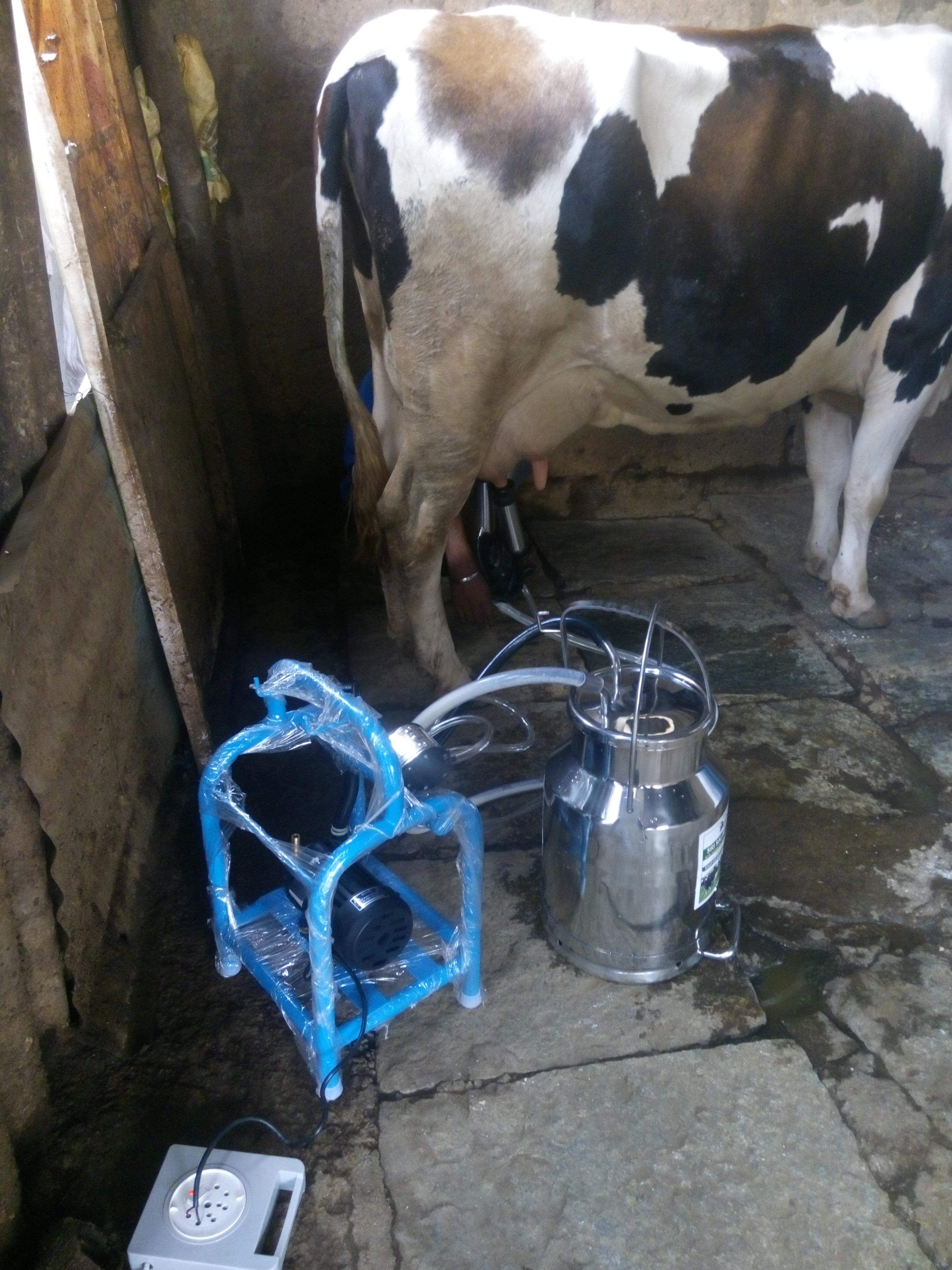 Nano Milking Machine