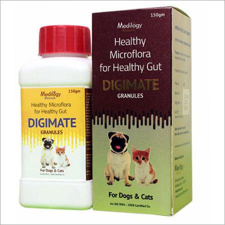 Probiotics Supplements