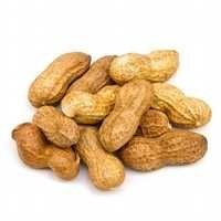 Raw Groundnut