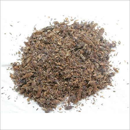 Ustukhuddus Herb
