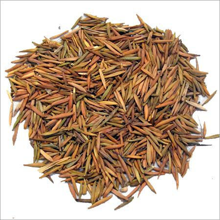 Inderjo Herb