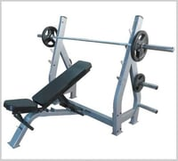 Multi Purpose Olympic Bench