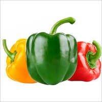 Sweet Pepper Seed