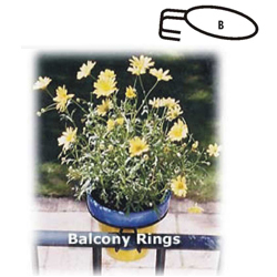 Balcony Rings