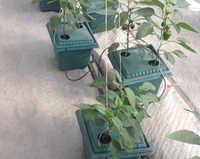 Pot Based System