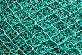 Small Fishing Net