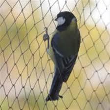 Knitted Anti Bird Netting