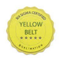 Yellow Belt Certification Services