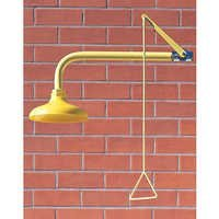 Shower Head (Wall Mounted)