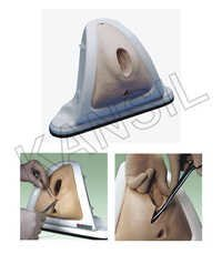 Episiotomy Training Simulator Model