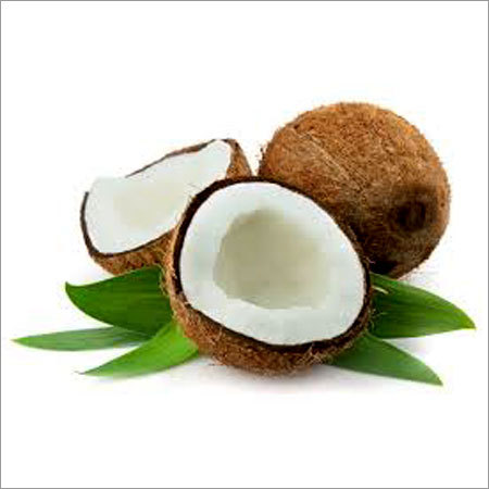 Coconut / Coconut Powder