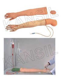 Multi Functional I.V.Training Arm Model