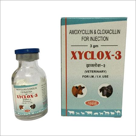 Cloxacillin Injection