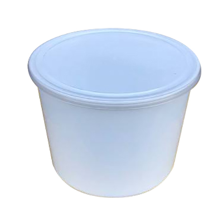 1200 ML Disposable Plastic Container