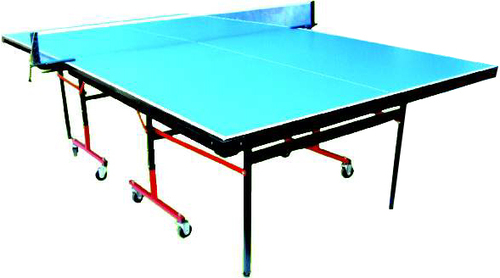 Table Tennis Table Storm with Wheels