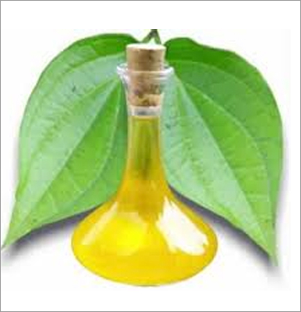 Betal Leaf Oil