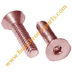 Bronze Allen Bolts