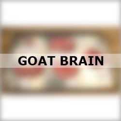 Goat Brain