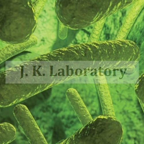 Antibacterial Activity On Materials Testing Lab