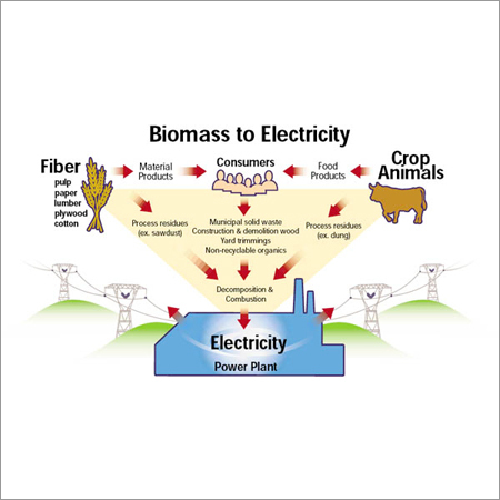 Biomass Electric Power Generation