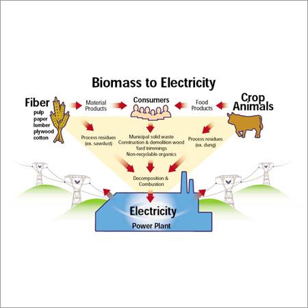 Biomass Electric Power Generation